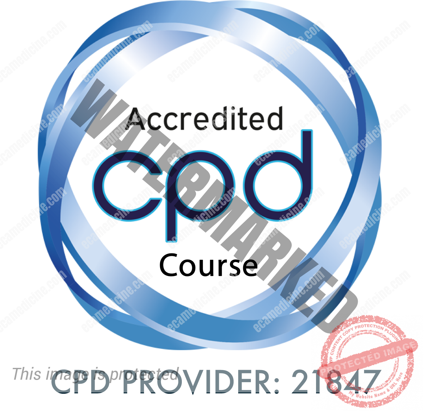 CPD Course Provider 21847-badge