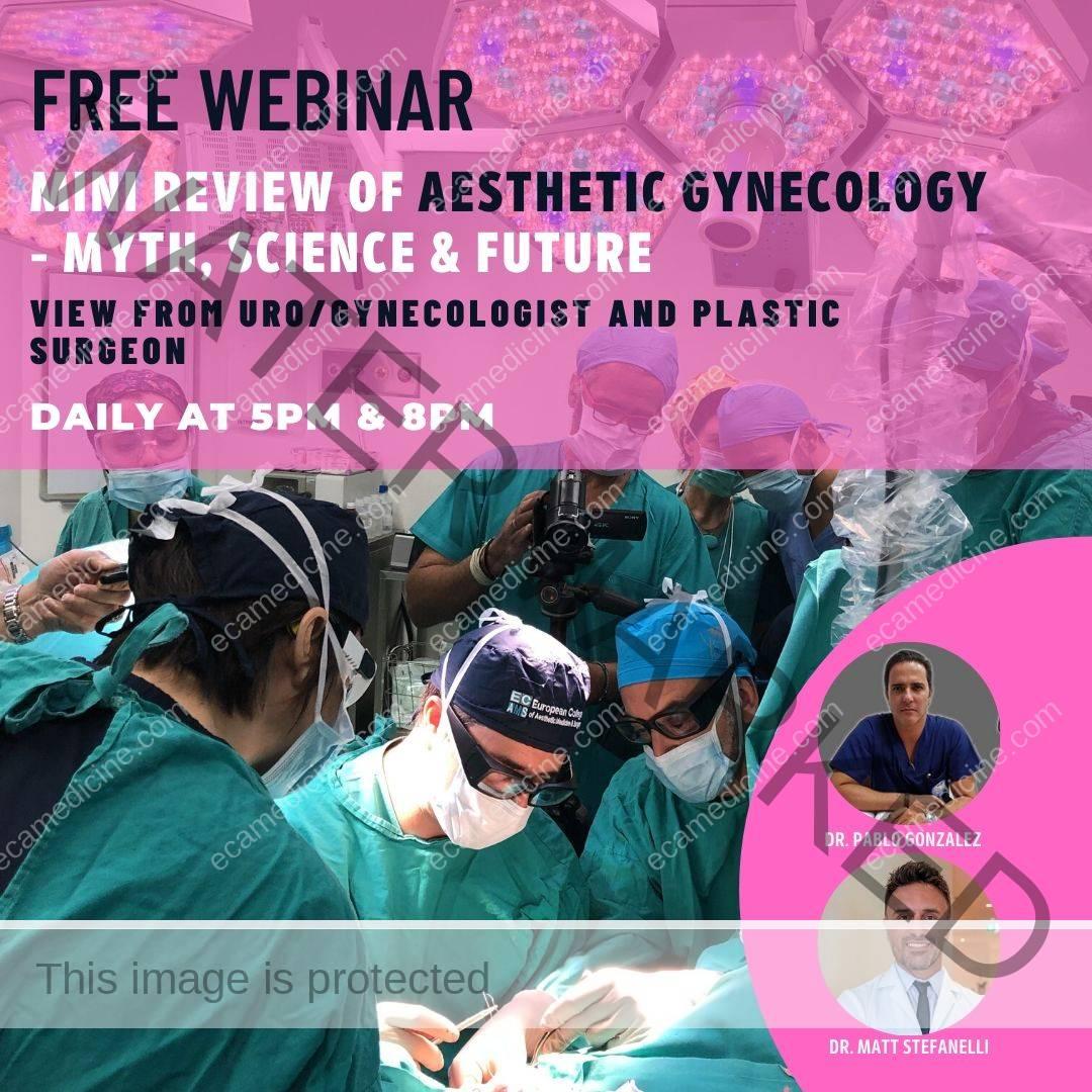 aesthetic gynecology webinar