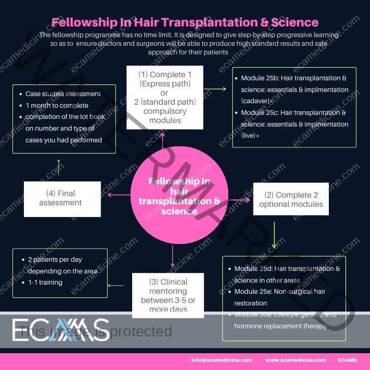 Fellowship in Hair transplantation