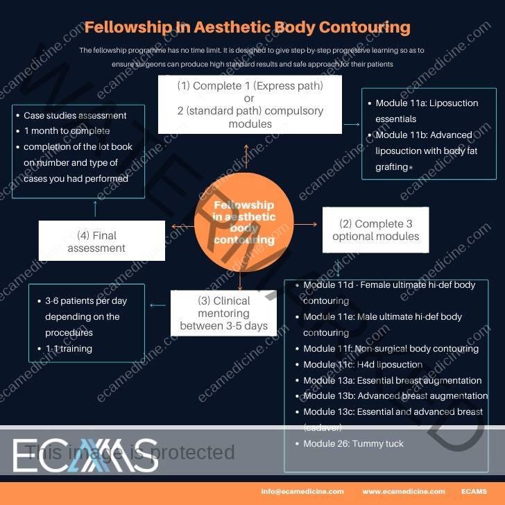 Fellowship in body contouring