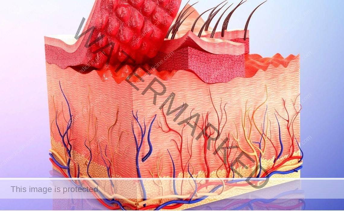 dermatology online aesthetic training