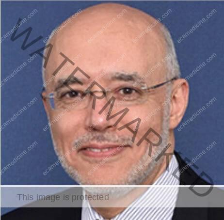 Prof. Hossam Paul