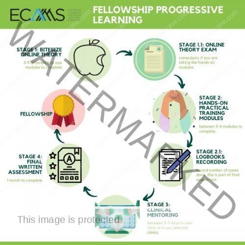 path for aesthetic fellowship